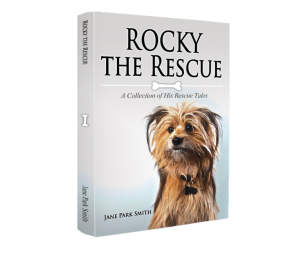 rocky 3D BOOK IMAGE
